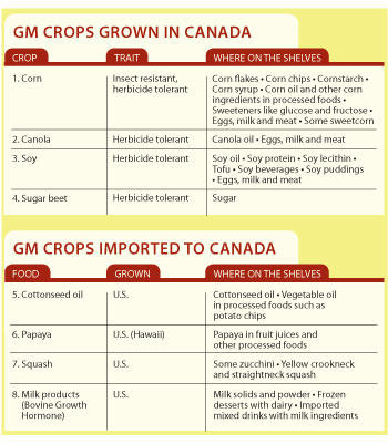 GM-Food-Chart-2012_large